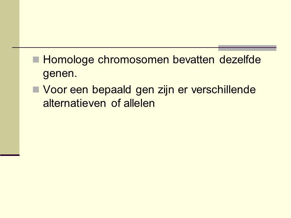 Homologe chromosomen bevatten dezelfde genen.