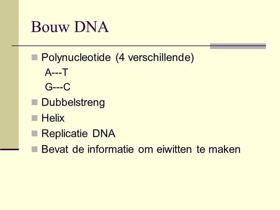 Bouw DNA Polynucleotide (4 verschillende) Dubbelstreng Helix