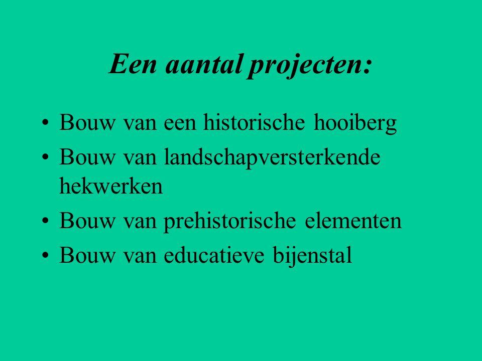 Een aantal projecten: Bouw van een historische hooiberg