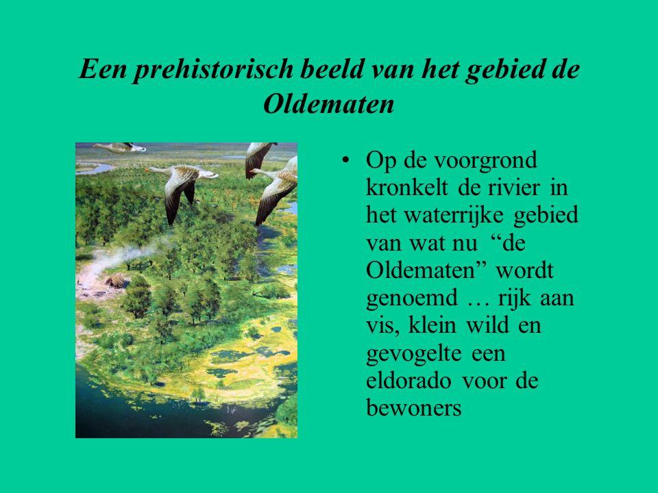 Een prehistorisch beeld van het gebied de Oldematen