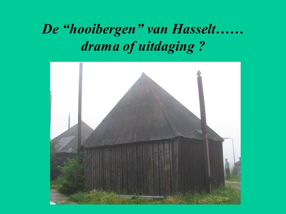 De hooibergen van Hasselt…… drama of uitdaging