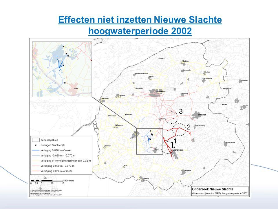 Effecten niet inzetten Nieuwe Slachte hoogwaterperiode 2002