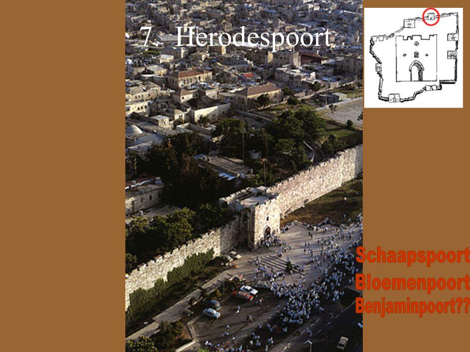 7. Herodespoort Schaapspoort Bloemenpoort Benjaminpoort