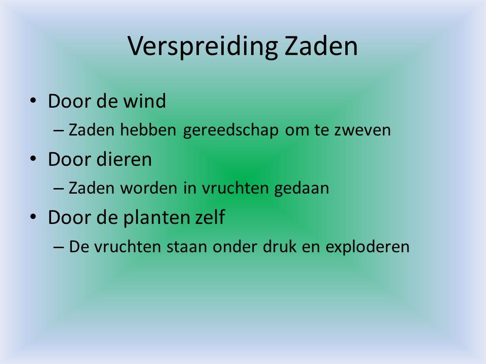 Verspreiding Zaden Door de wind Door dieren Door de planten zelf
