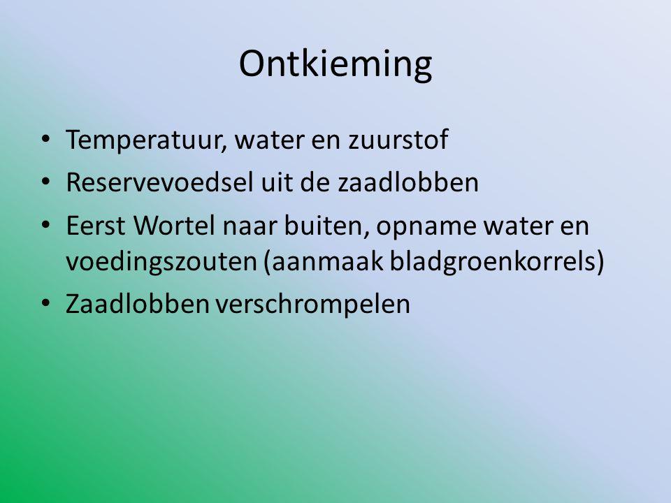 Ontkieming Temperatuur, water en zuurstof