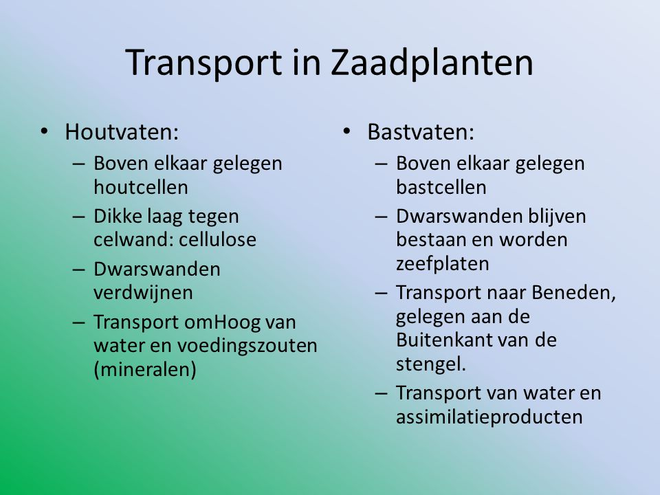 Transport in Zaadplanten