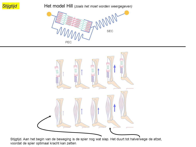 Het model Hill (zoals het moet worden weergegeven)