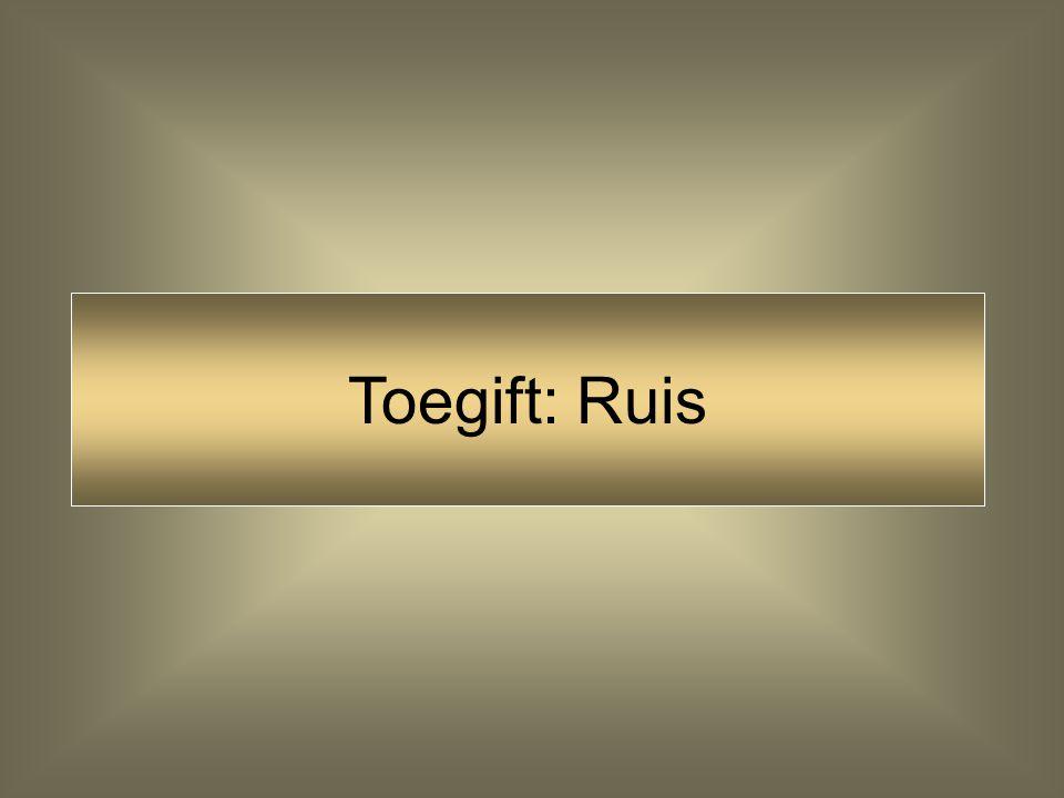 Toegift: Ruis