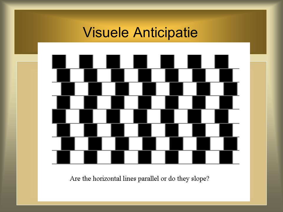 Visuele Anticipatie