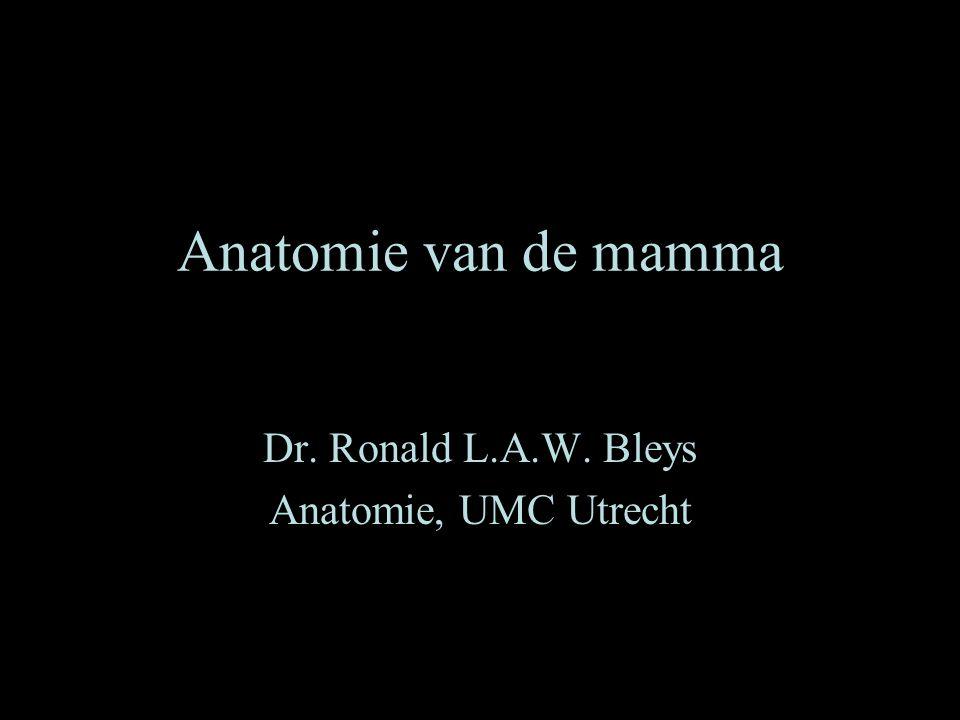 Dr. Ronald L.A.W. Bleys Anatomie, UMC Utrecht