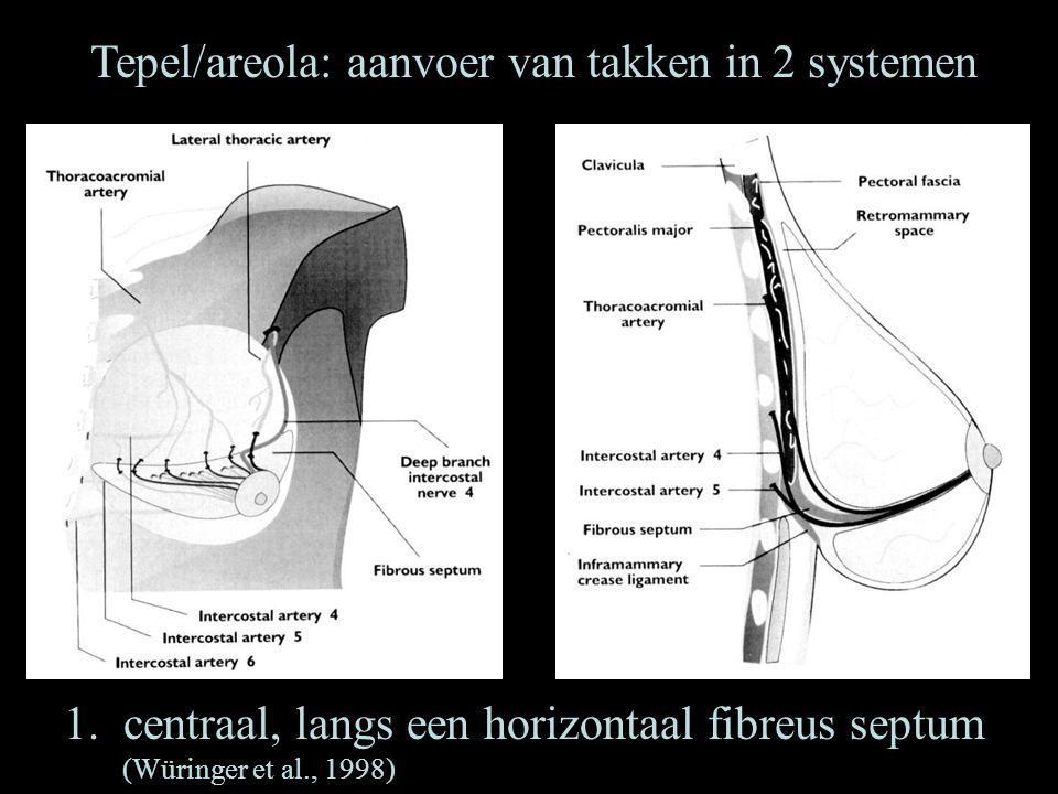 Tepel/areola: aanvoer van takken in 2 systemen