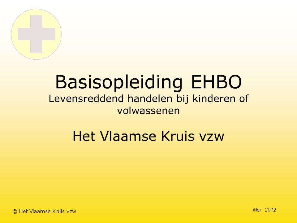 Basisopleiding EHBO Levensreddend handelen bij kinderen of volwassenen