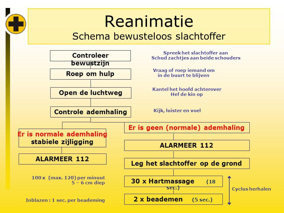 Reanimatie Schema bewusteloos slachtoffer