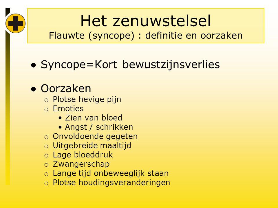 Het zenuwstelsel Flauwte (syncope) : definitie en oorzaken