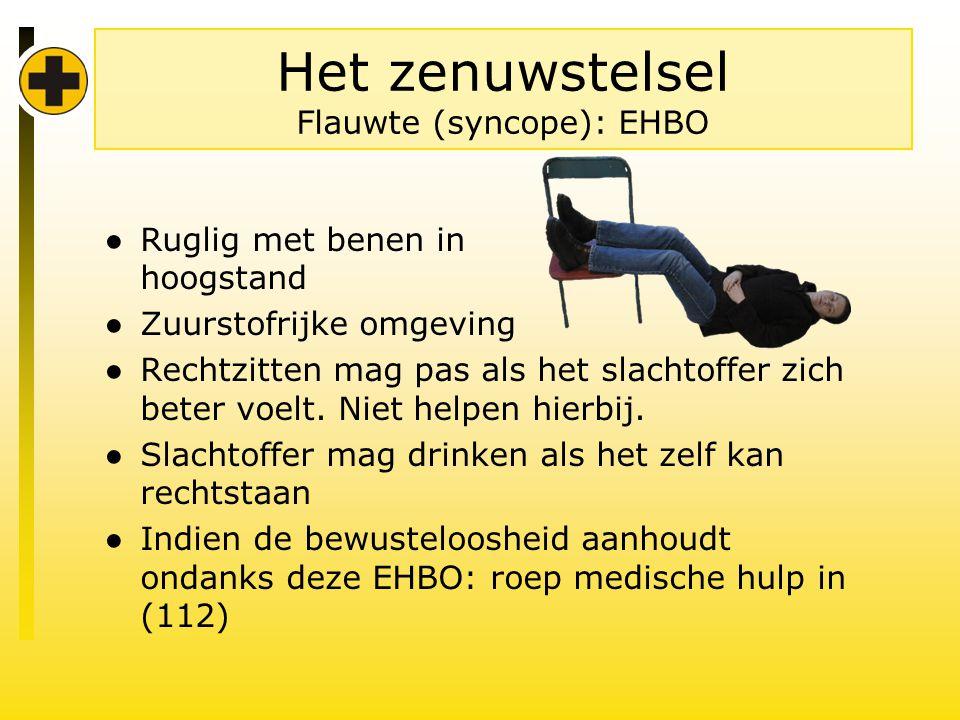 Het zenuwstelsel Flauwte (syncope): EHBO
