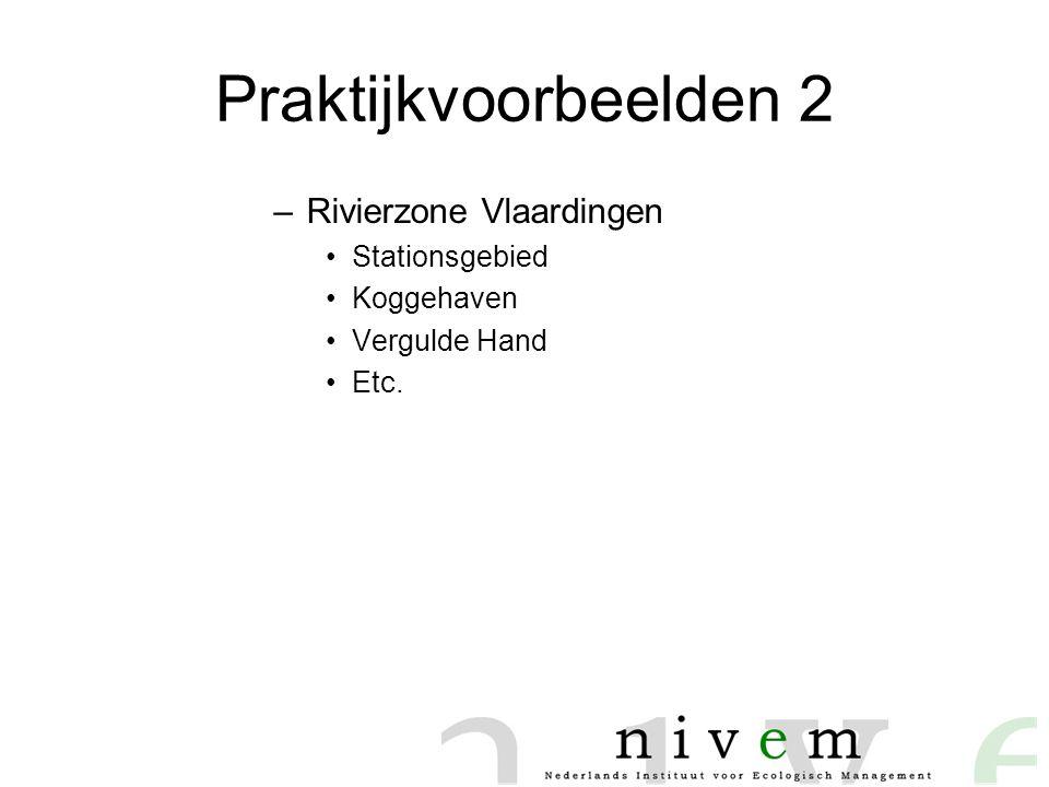 Praktijkvoorbeelden 2 Rivierzone Vlaardingen Stationsgebied Koggehaven