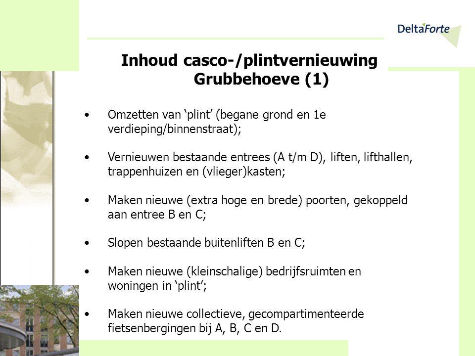 Inhoud casco-/plintvernieuwing Grubbehoeve (1)