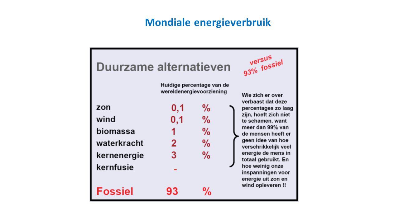 Mondiale energieverbruik