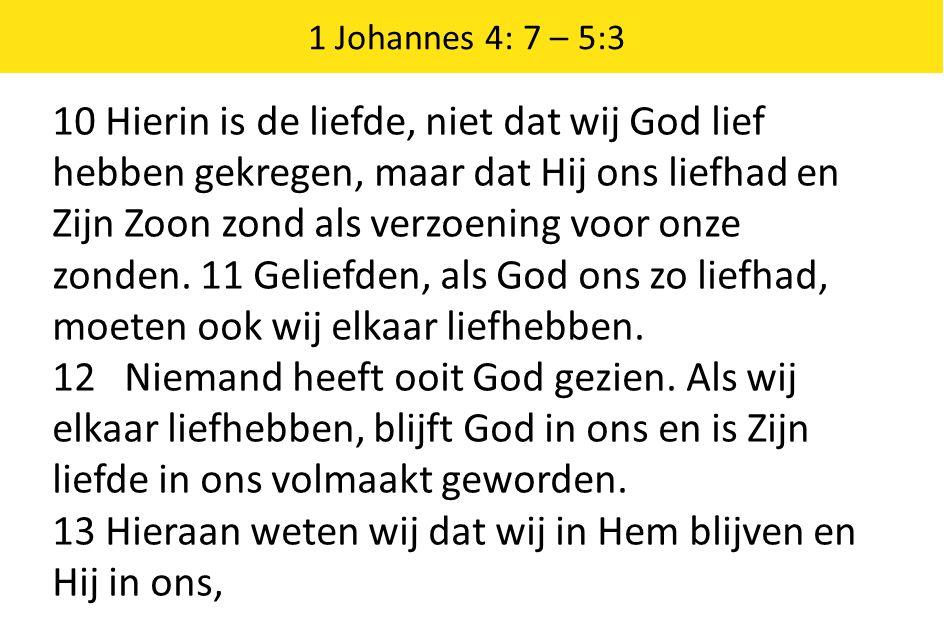 13 Hieraan weten wij dat wij in Hem blijven en Hij in ons,