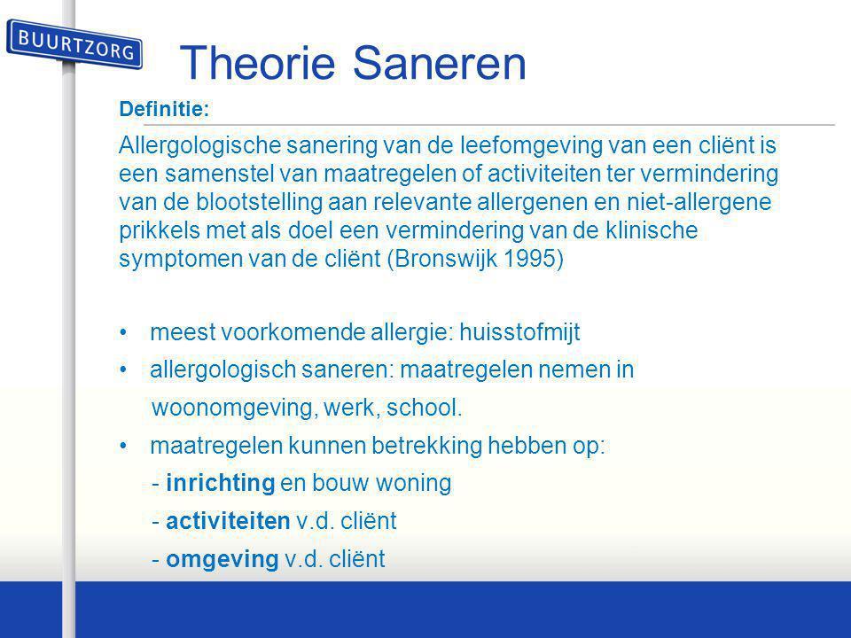 Theorie Saneren Definitie: