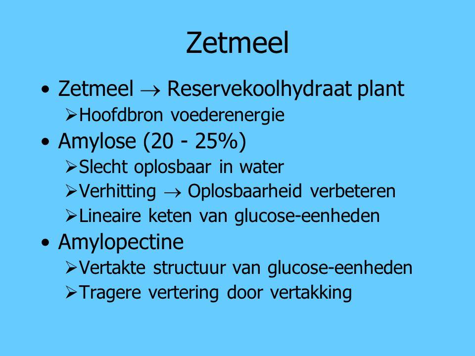 Zetmeel Zetmeel  Reservekoolhydraat plant Amylose (20 - 25%)