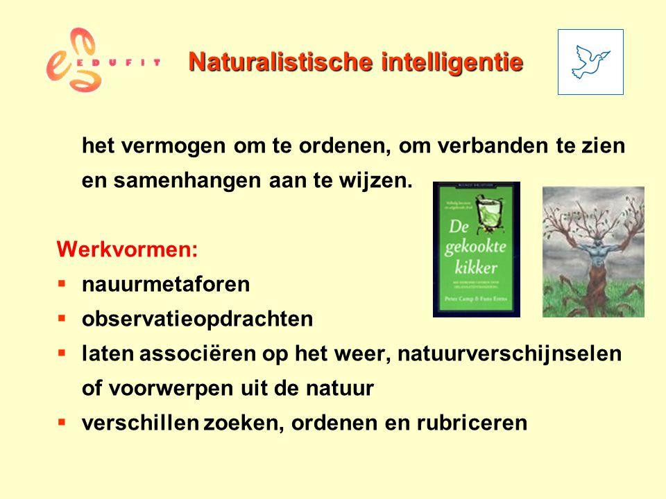 Naturalistische intelligentie