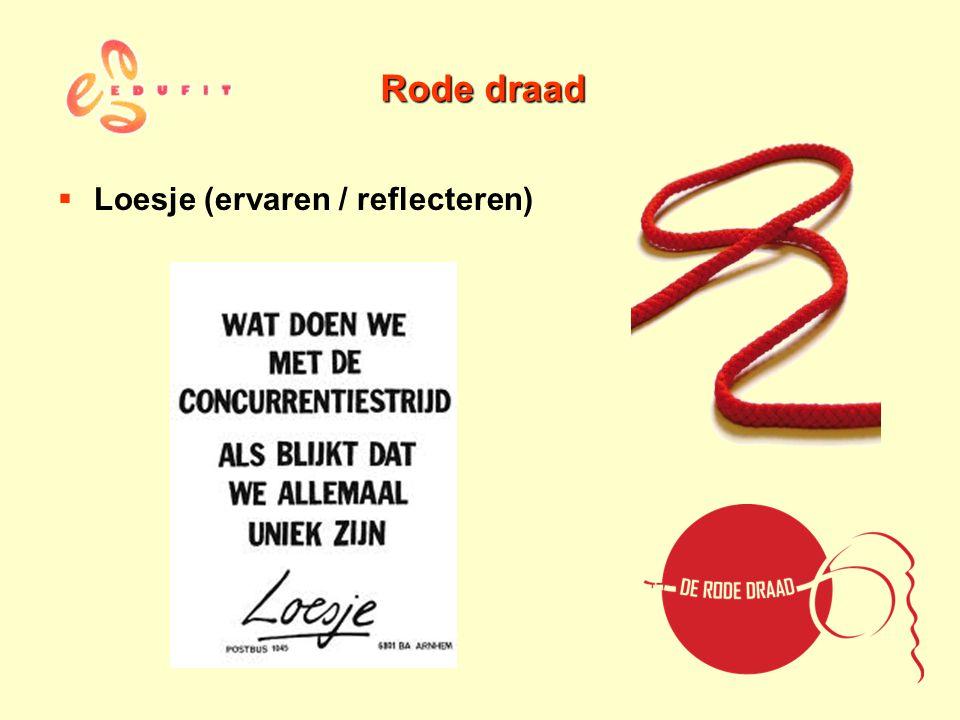Rode draad Loesje (ervaren / reflecteren)