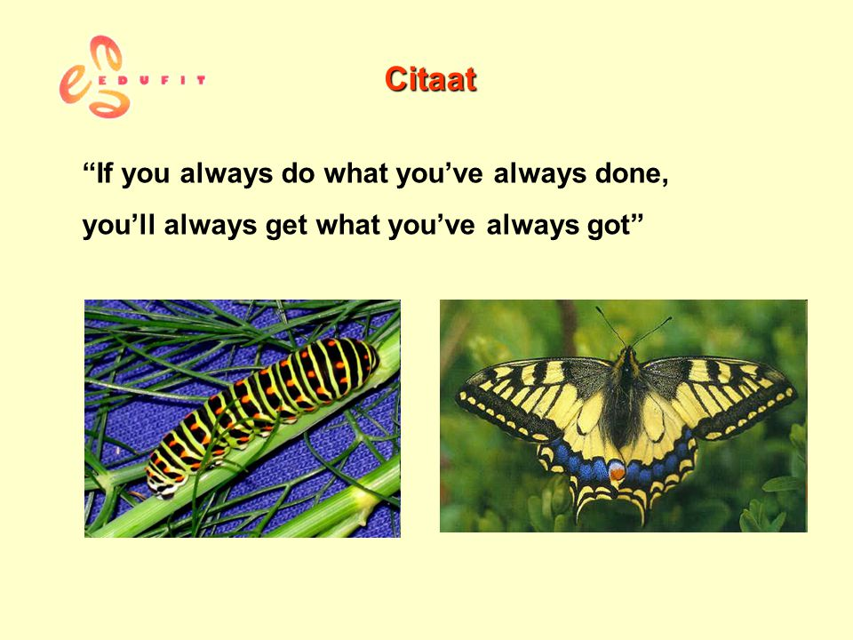 Citaat If you always do what you've always done,