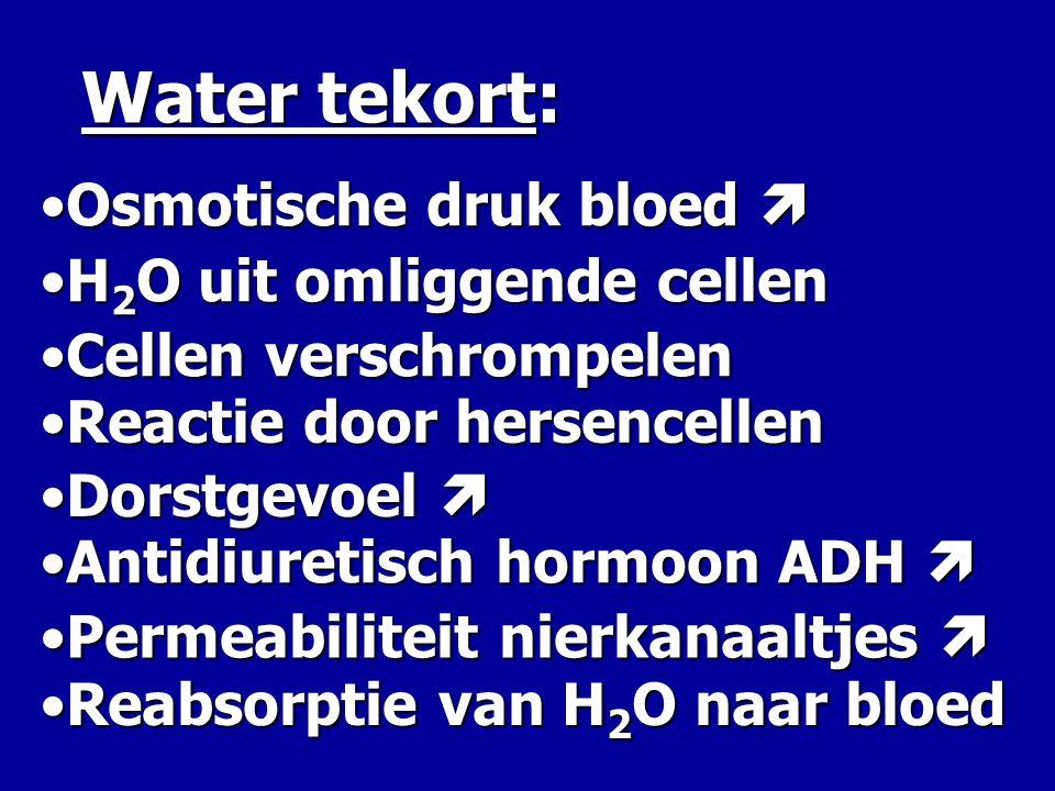 Water tekort: Osmotische druk bloed  H2O uit omliggende cellen