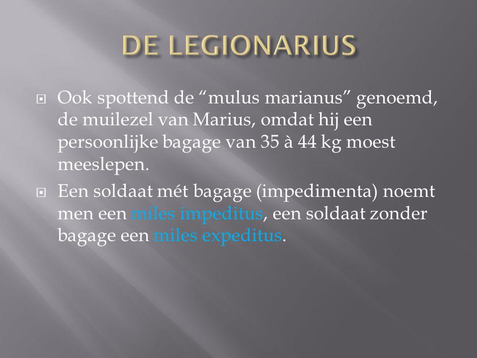 DE LEGIONARIUS Ook spottend de mulus marianus genoemd, de muilezel van Marius, omdat hij een persoonlijke bagage van 35 à 44 kg moest meeslepen.