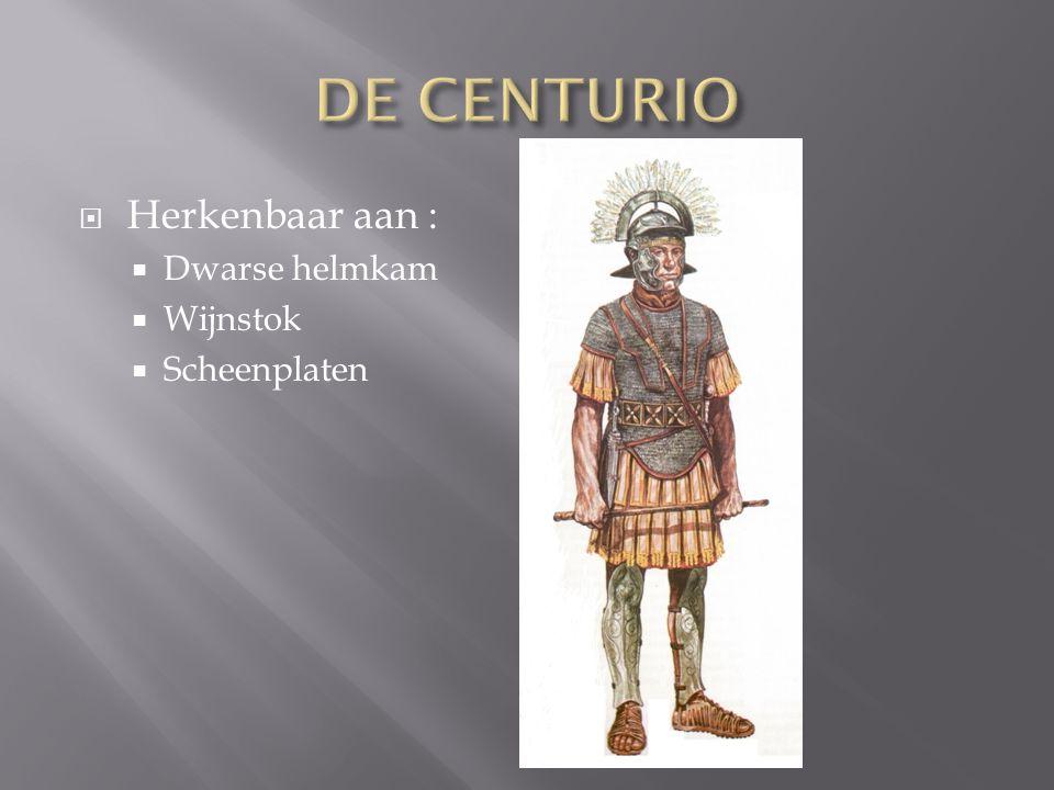 DE CENTURIO Herkenbaar aan : Dwarse helmkam Wijnstok Scheenplaten