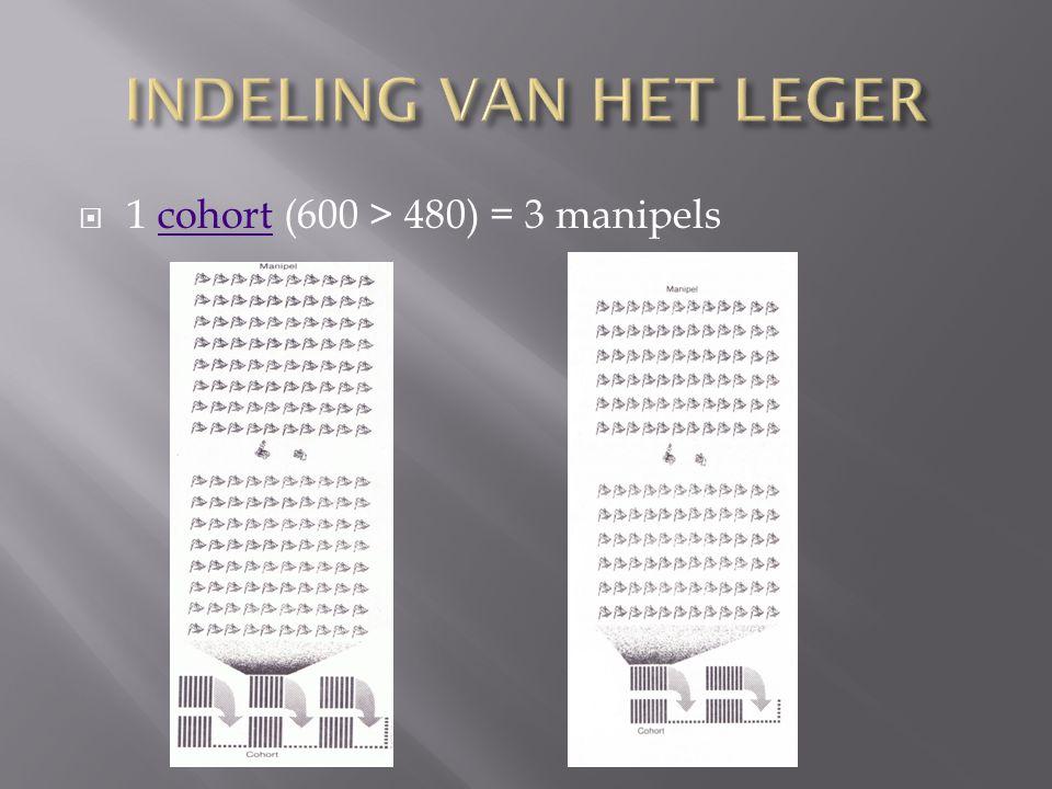 INDELING VAN HET LEGER 1 cohort (600 > 480) = 3 manipels