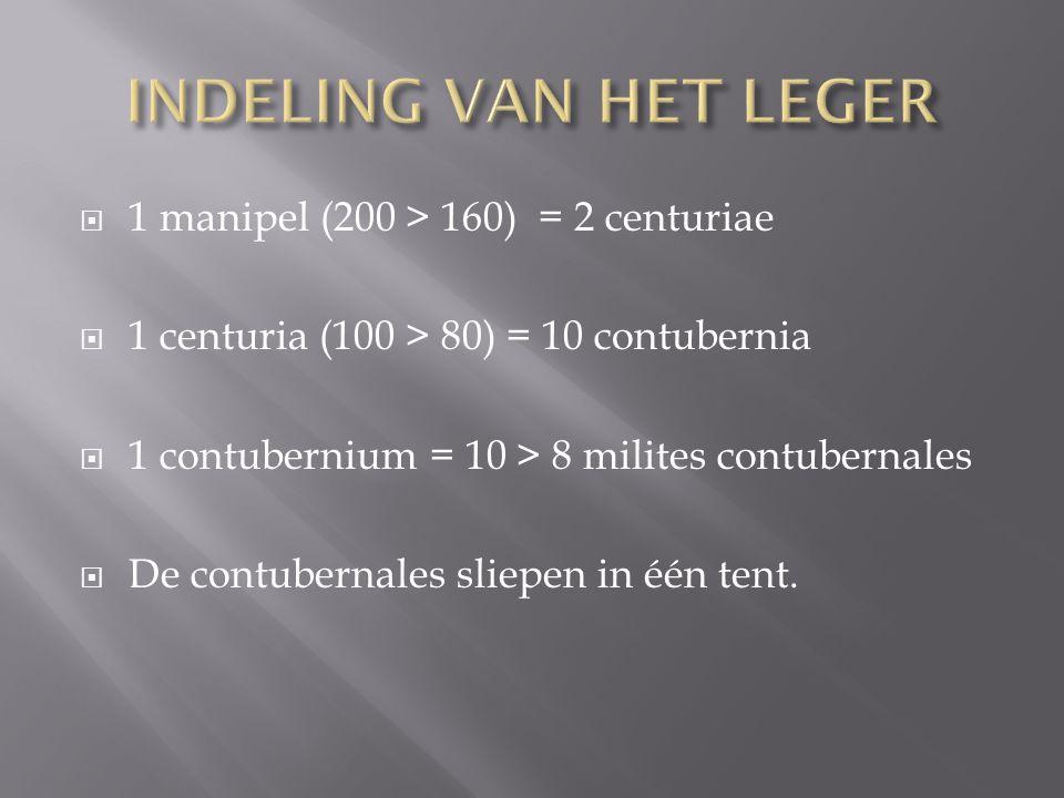 INDELING VAN HET LEGER 1 manipel (200 > 160) = 2 centuriae
