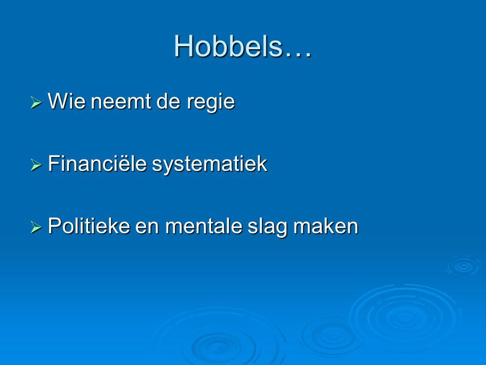 Hobbels… Wie neemt de regie Financiële systematiek