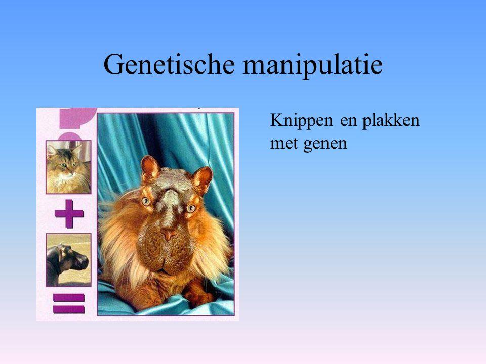 Genetische manipulatie