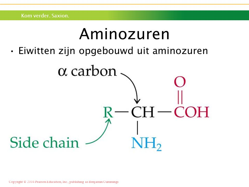 Aminozuren Eiwitten zijn opgebouwd uit aminozuren