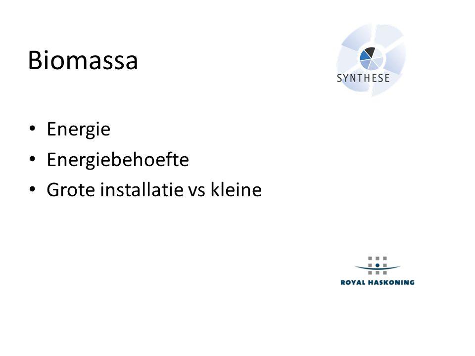 Biomassa Energie Energiebehoefte Grote installatie vs kleine