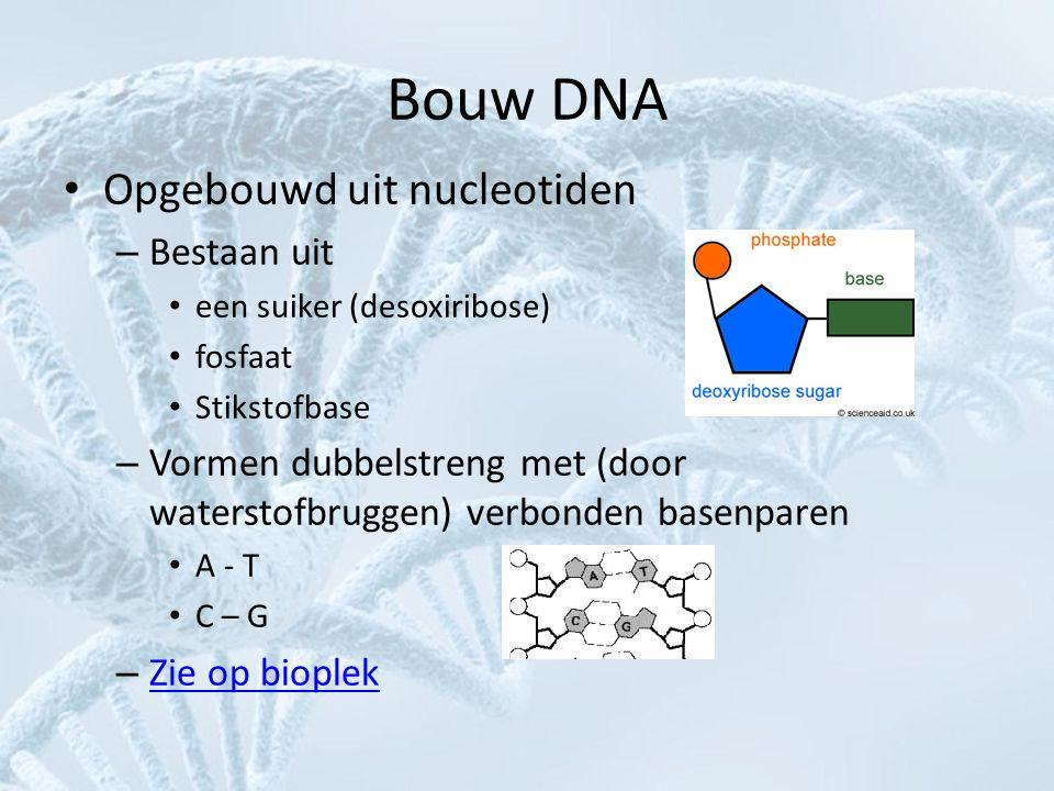 Bouw DNA Opgebouwd uit nucleotiden Bestaan uit
