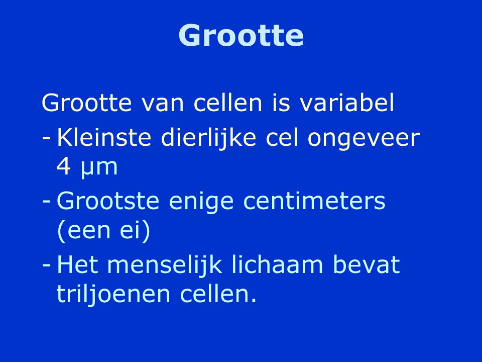 Grootte Grootte van cellen is variabel