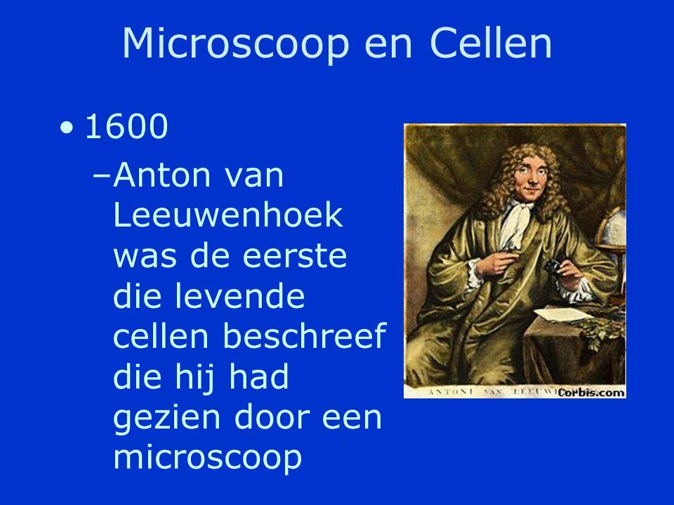 Microscoop en Cellen 1600. Anton van Leeuwenhoek was de eerste die levende cellen beschreef die hij had gezien door een microscoop.