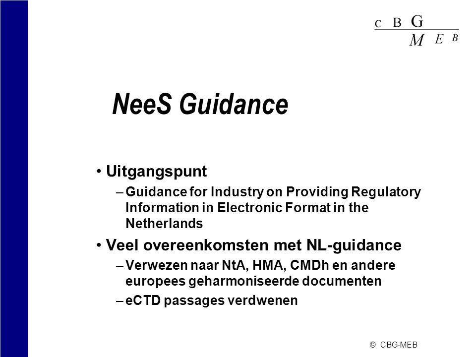 NeeS Guidance Uitgangspunt Veel overeenkomsten met NL-guidance