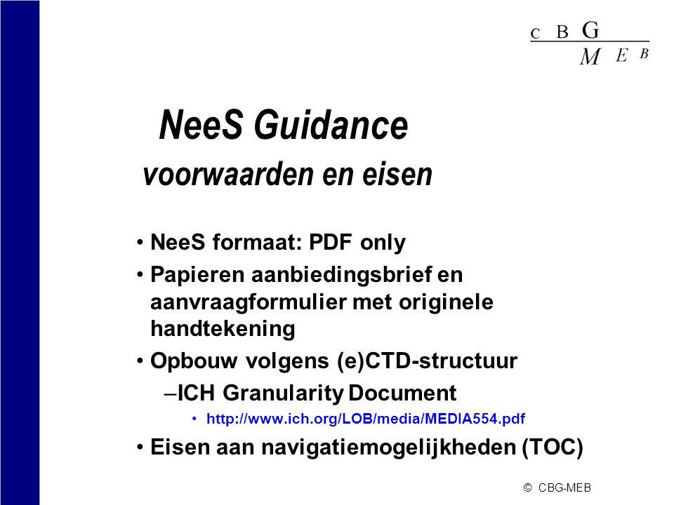 NeeS Guidance voorwaarden en eisen