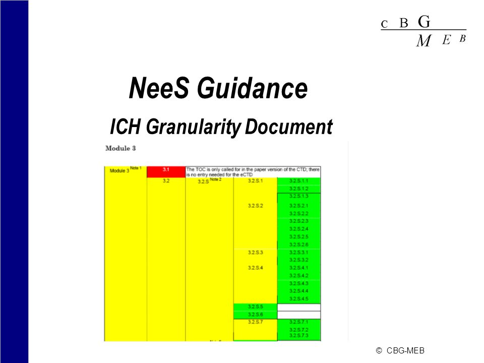NeeS Guidance ICH Granularity Document