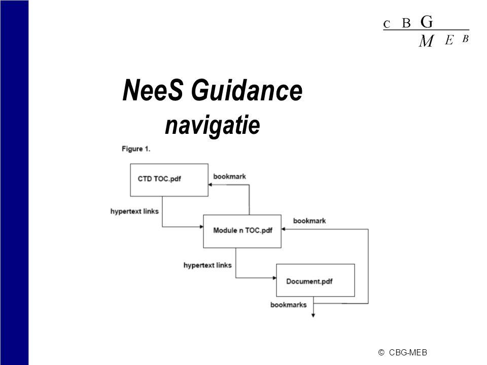 NeeS Guidance navigatie