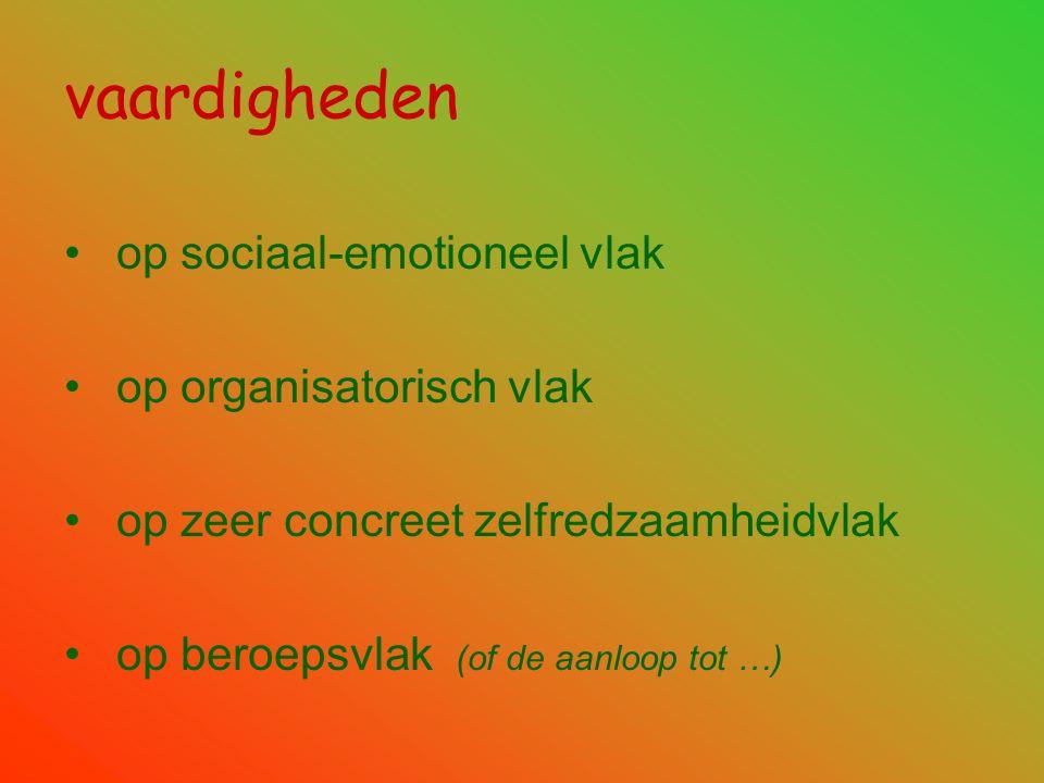vaardigheden op sociaal-emotioneel vlak op organisatorisch vlak