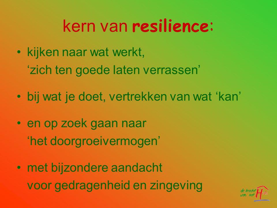 kern van resilience: kijken naar wat werkt,