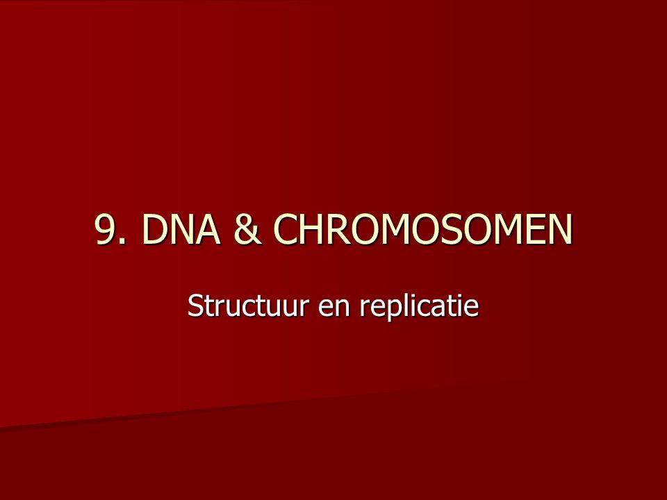 Structuur en replicatie
