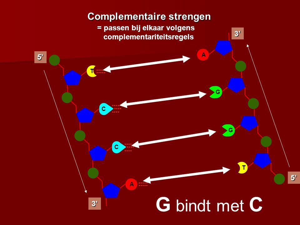 G bindt met C T bindt met A Complementaire strengen