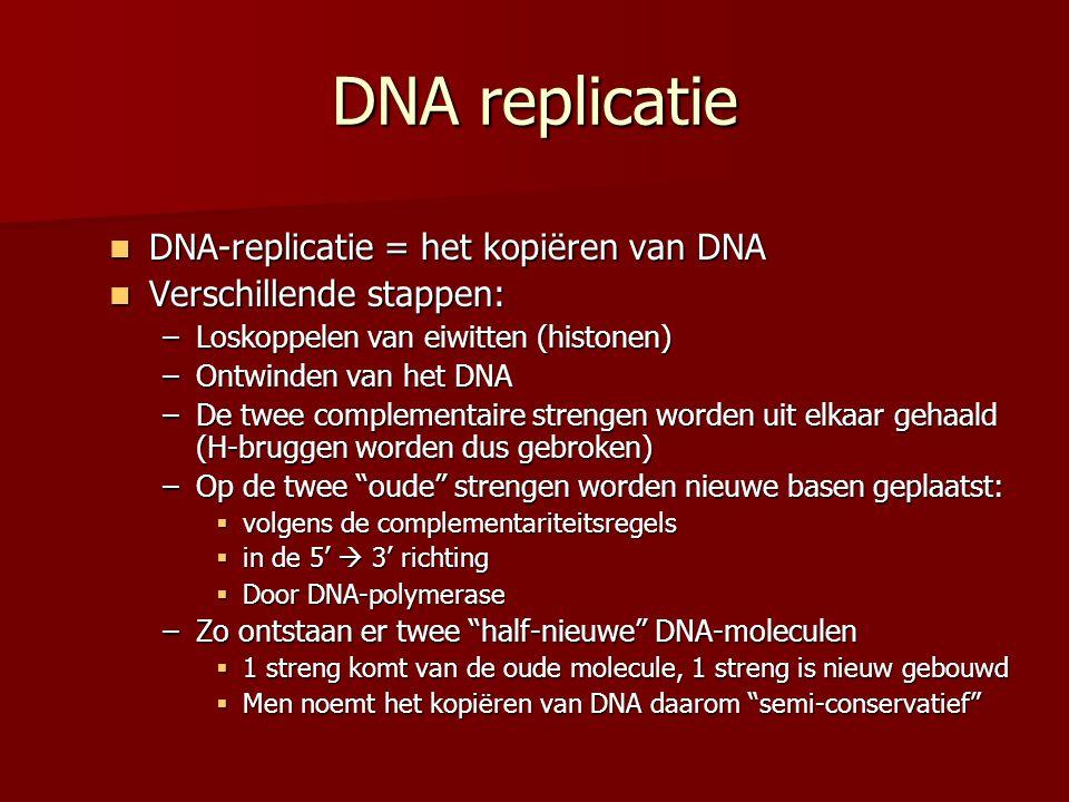 DNA replicatie DNA-replicatie = het kopiëren van DNA