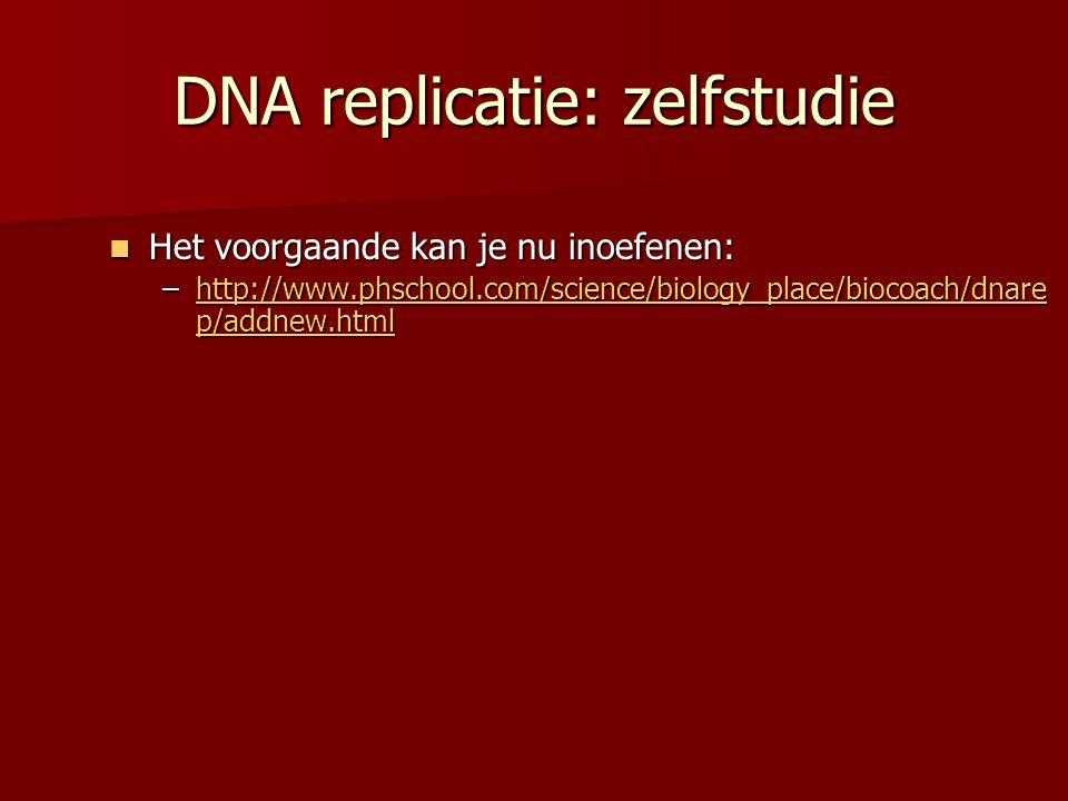 DNA replicatie: zelfstudie